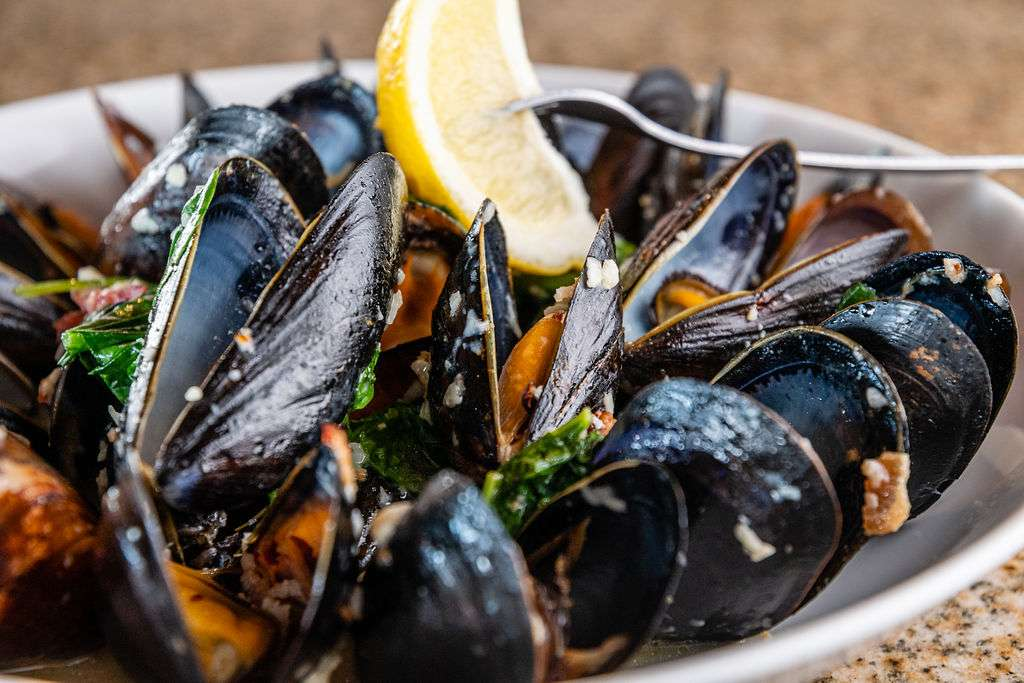 Mussels and Bleu