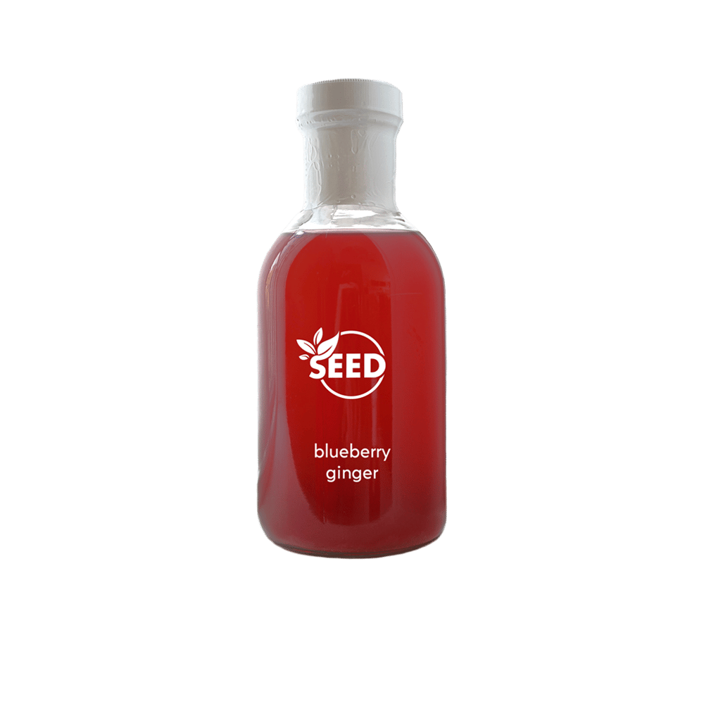SEED Blueberry & Ginger