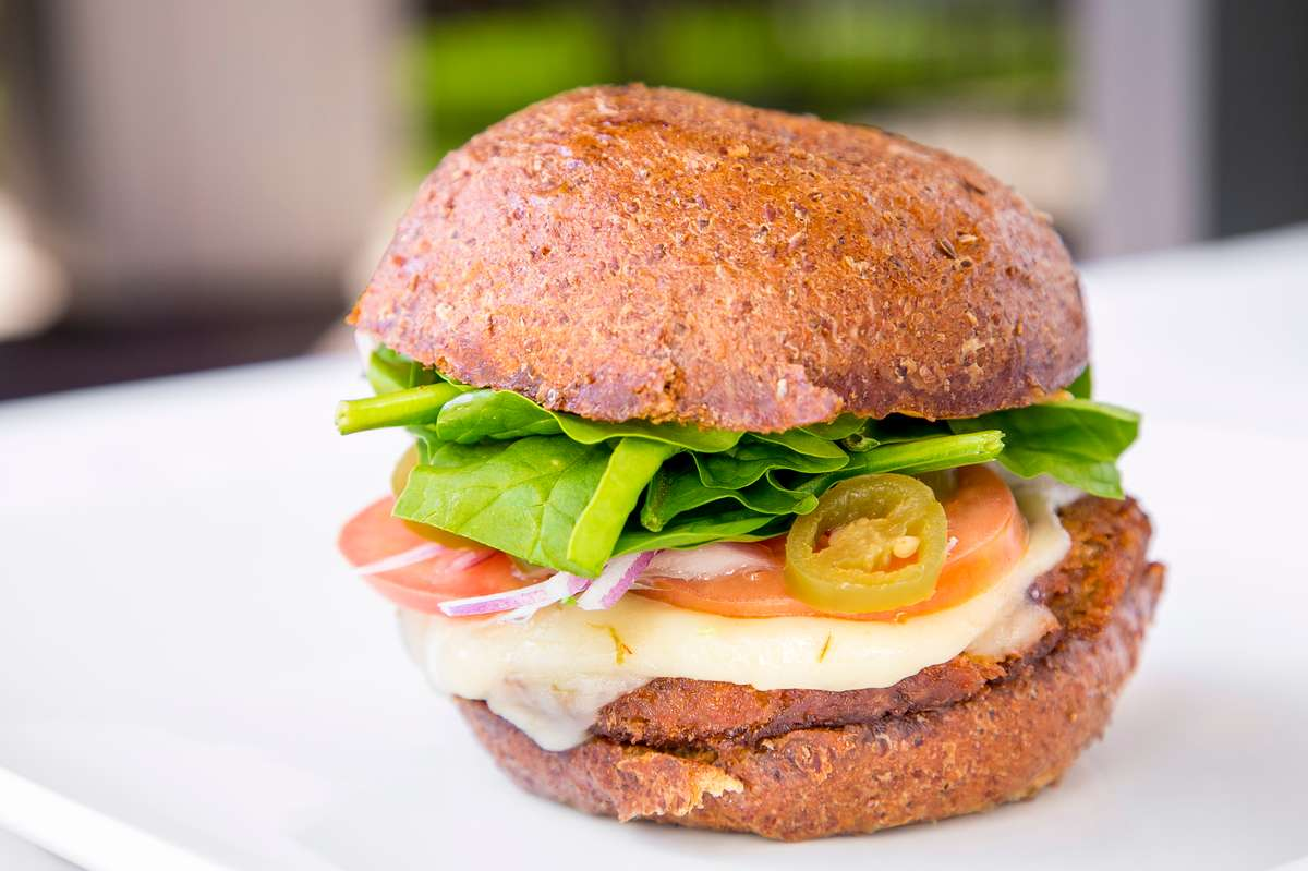 Earth Burger