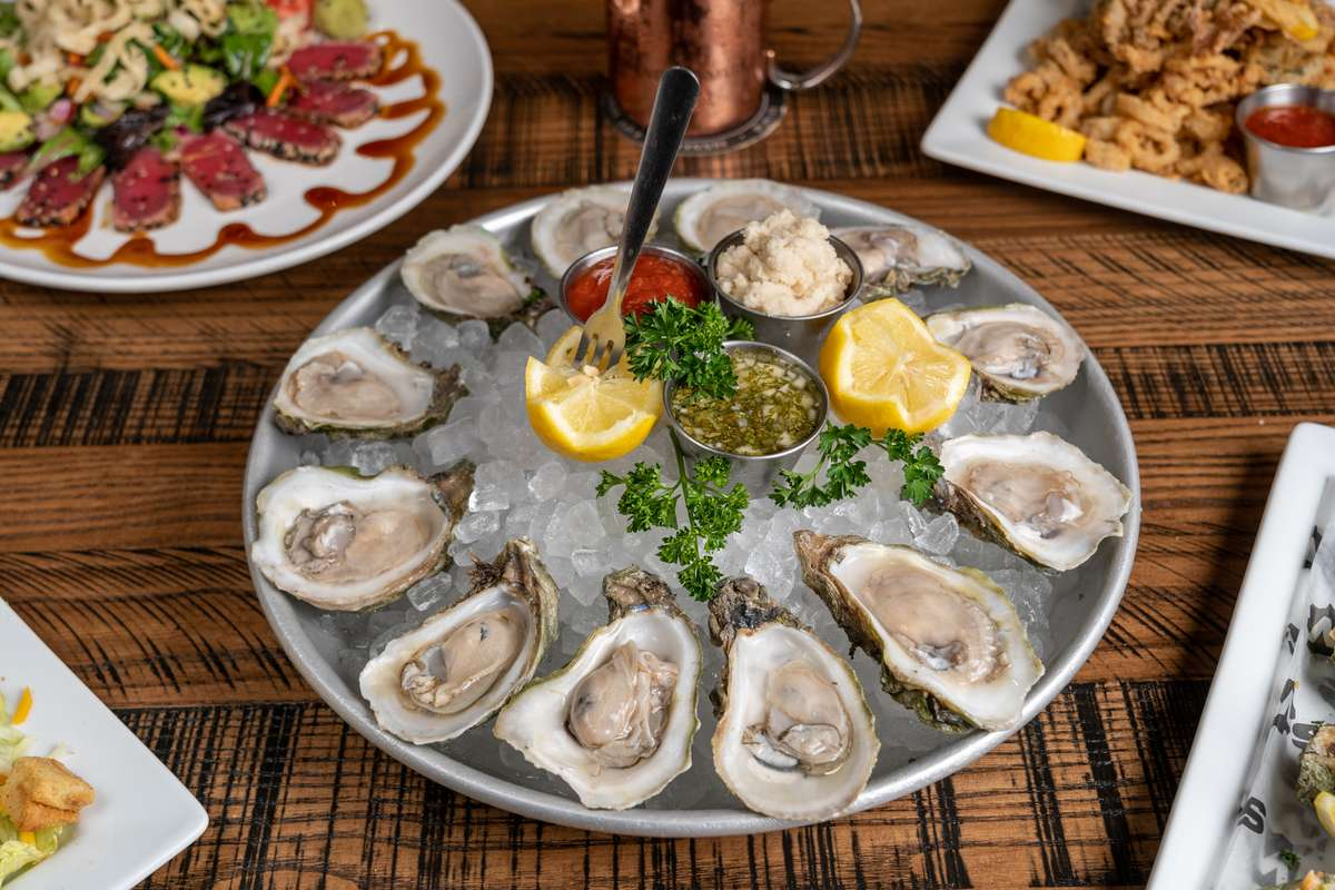 Gulf Coast Oysters on the Half Shell