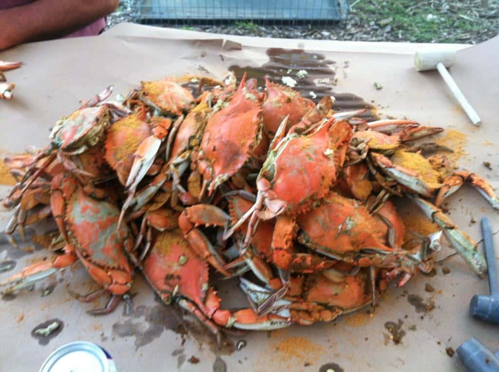Crab Feast Picnic