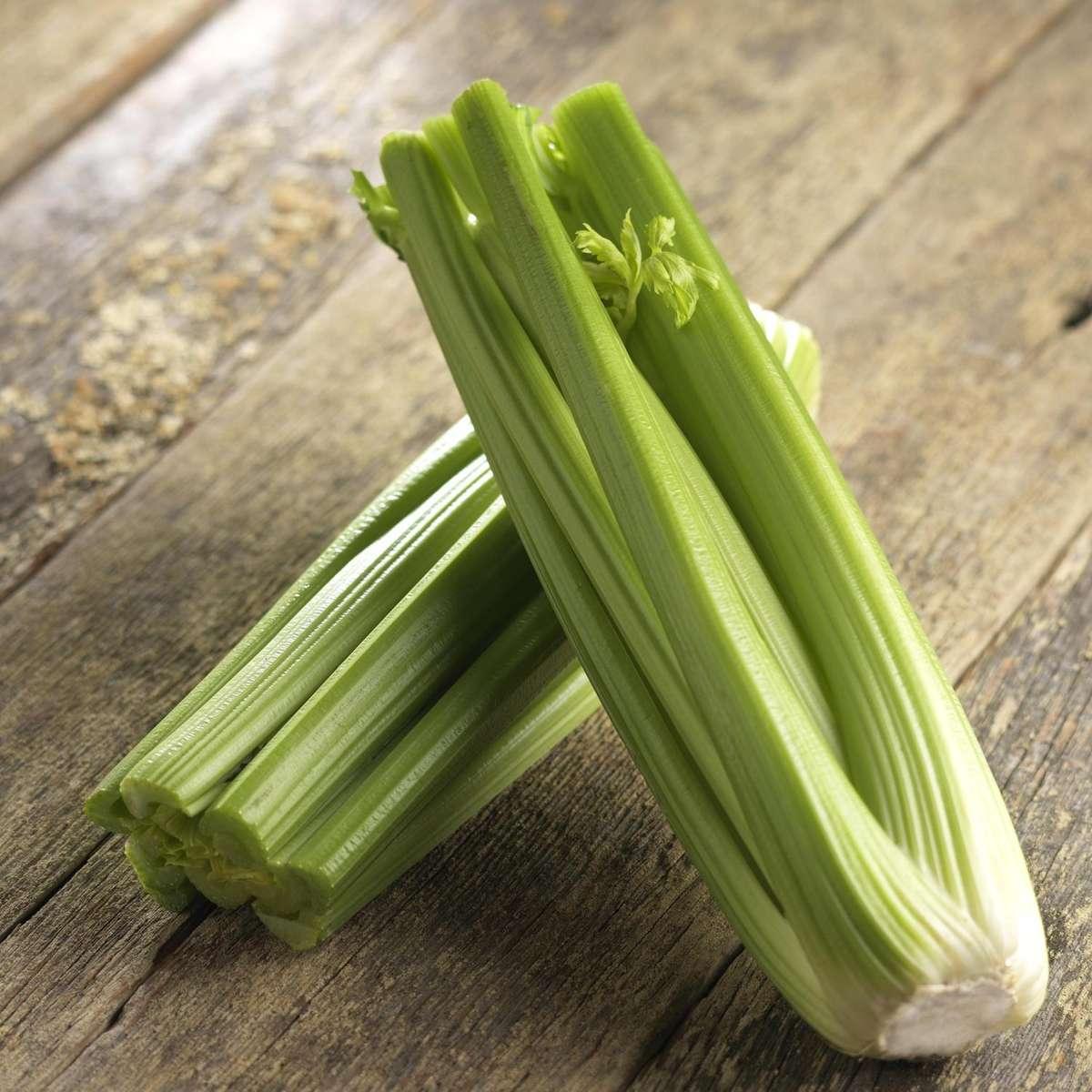 Celery Pascal Foodservice