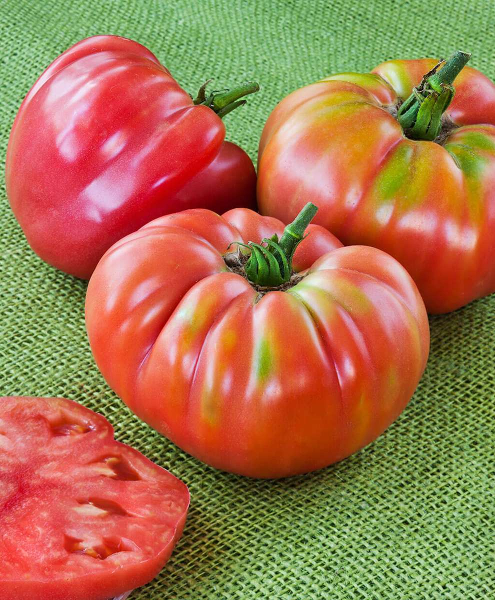 Tomato Fresh Heirloom