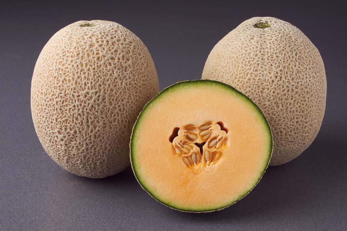 Fresh Fancy Cantaloupe Melons