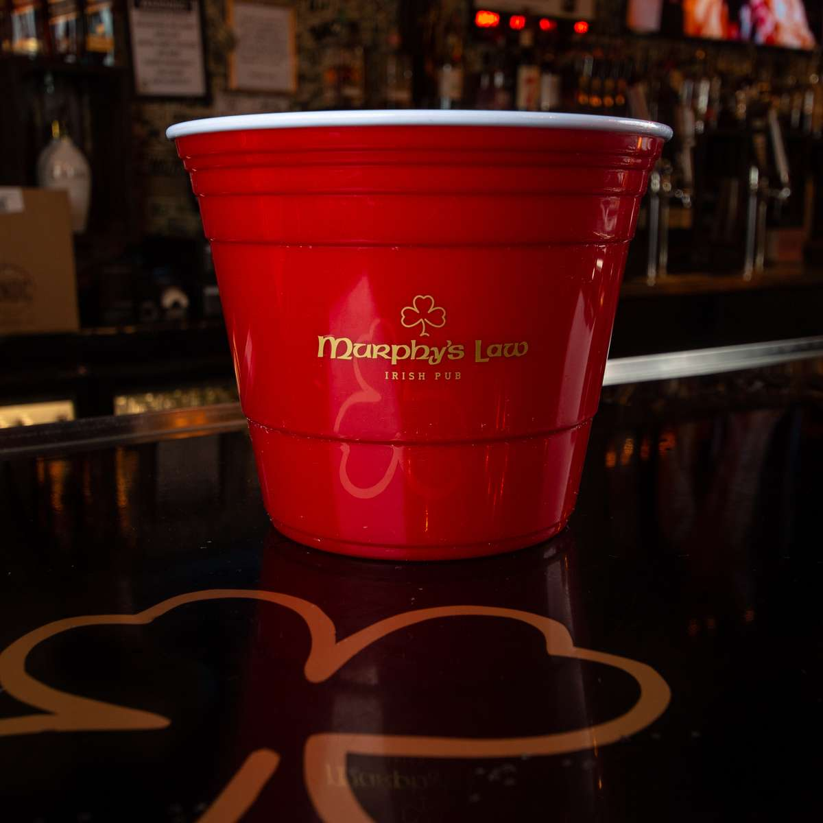 Murphy's Solo Cup Bucket