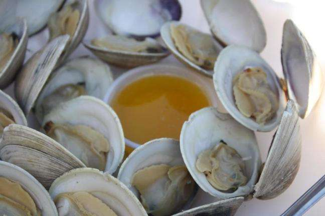 Middle-Neck Clams