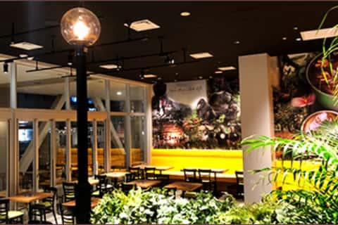 Leafy interior of Urth Caffe Terrace Mall Shonan