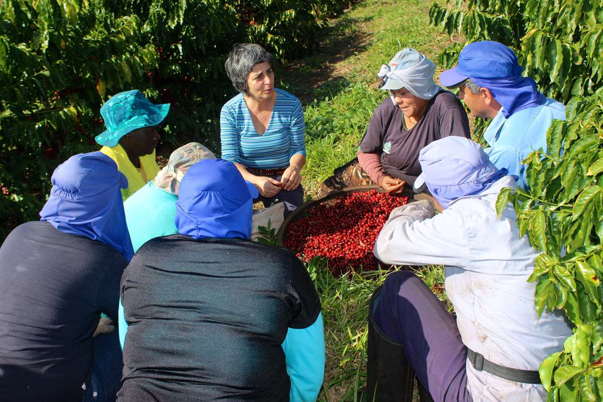 Miriam speaks with 7 workers among the crop