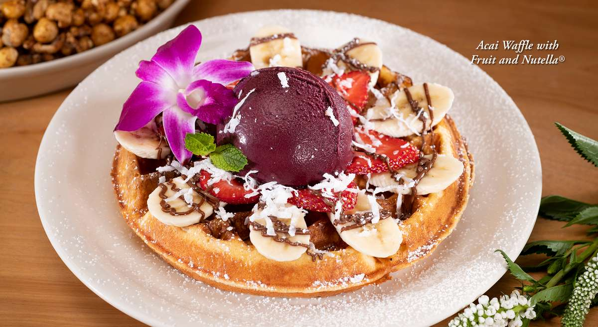 Belgian waffle topped with fresh strawberries and bananas served with a scoop of Acai Sorbet garnished with coconut and Nutella drizzle