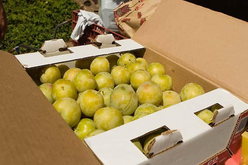 box of fresh fruit