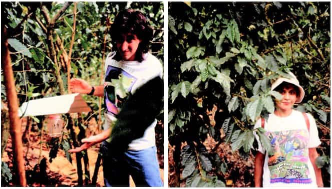 Left photo - Shallom Berkman shows natural pest repellent used at Chiapas Mexico coffee farm. Right photo, Jilla Berkman stands next to coffee tree at Chiapas coffee farm