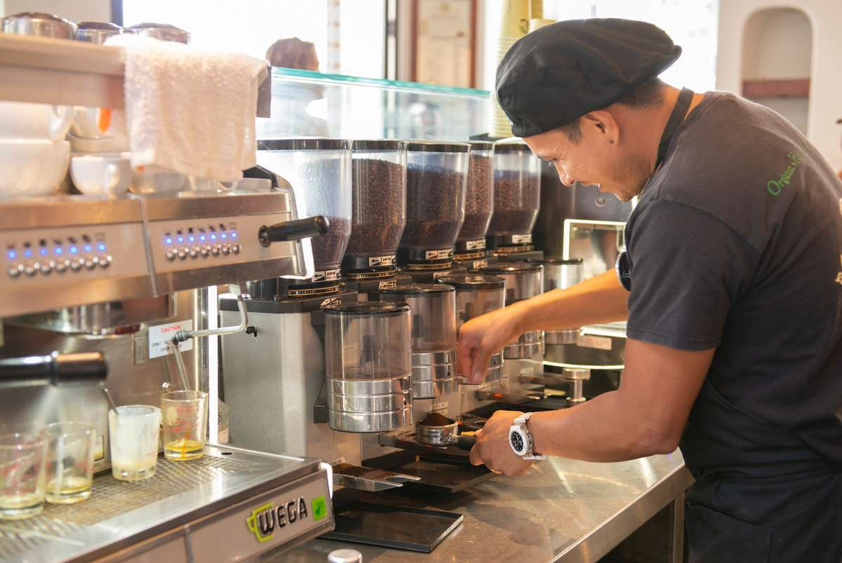 Barista carefully grinds coffee beans