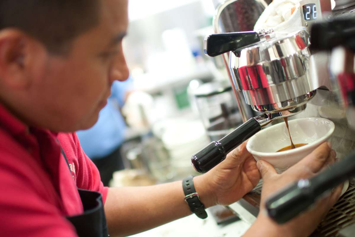 Barista watches coffee dripping into large white mug as it is forced through filter of espresso machine.