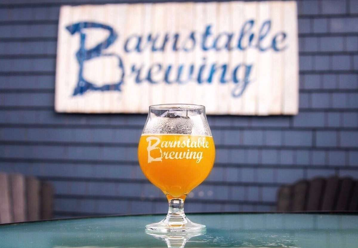 Glass of beer pictured under Barnstable Brewing sign
