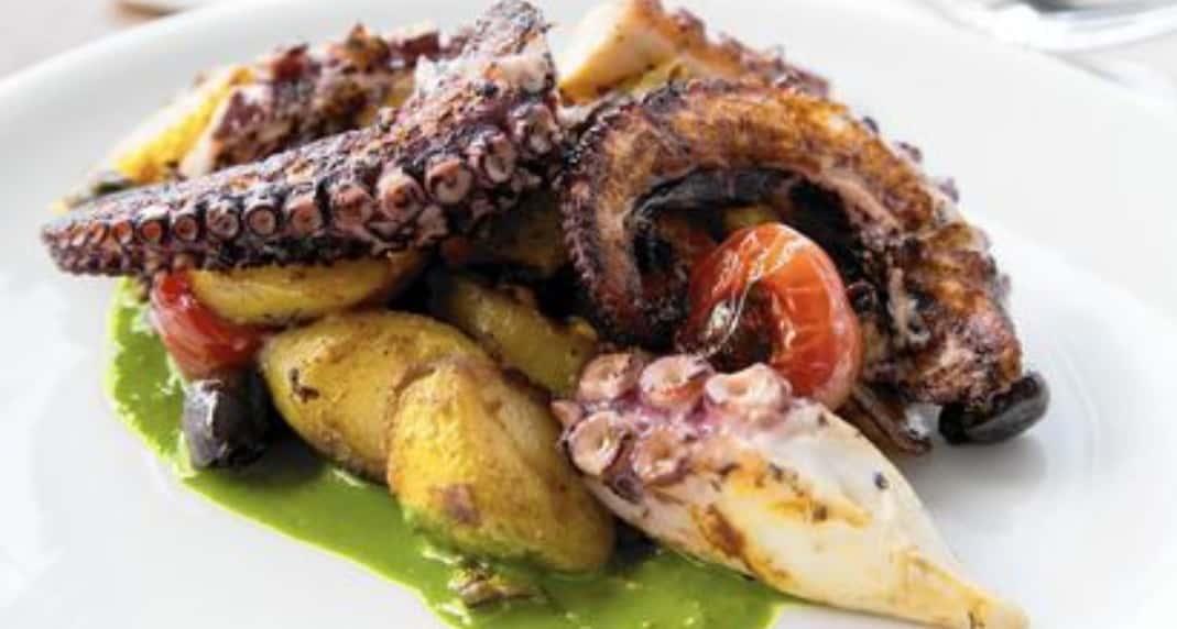 Seared Octopus