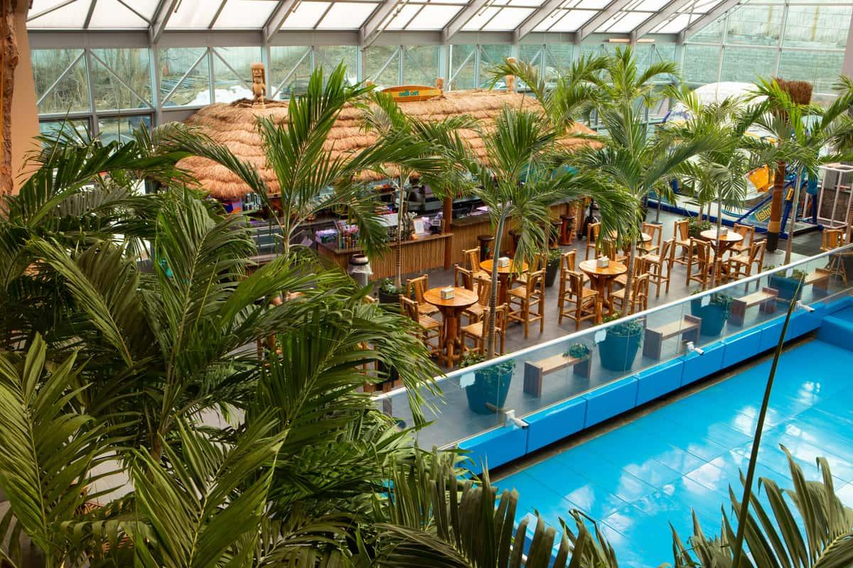 oasis bar area