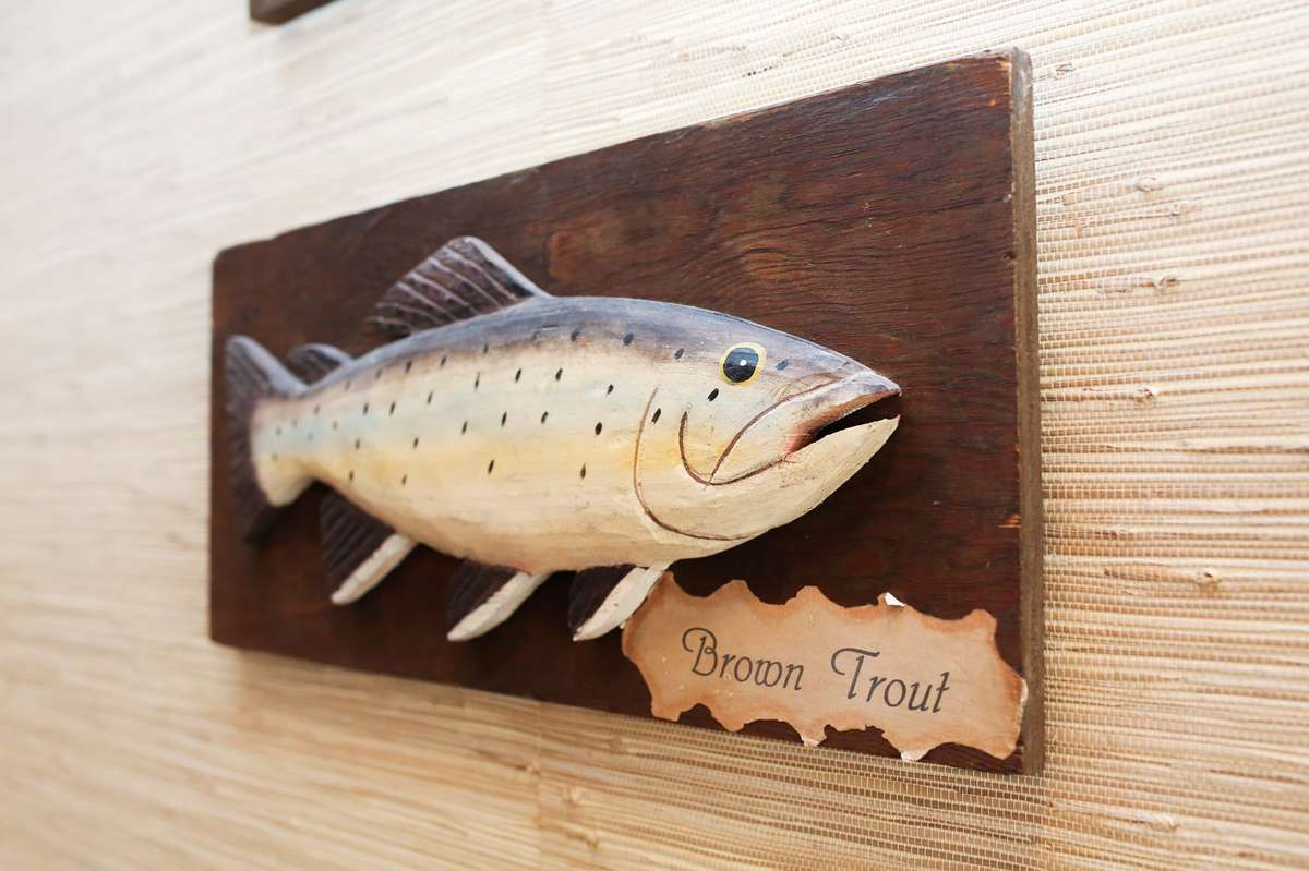 The Brown Trout Decor