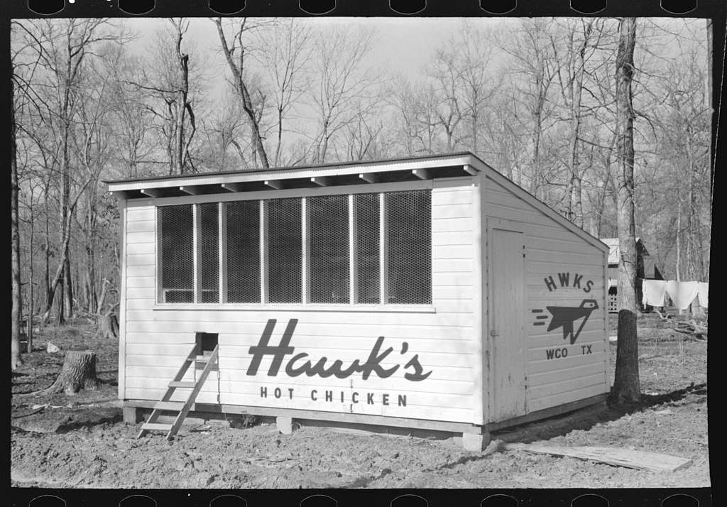 Hawk's Chicken Coop