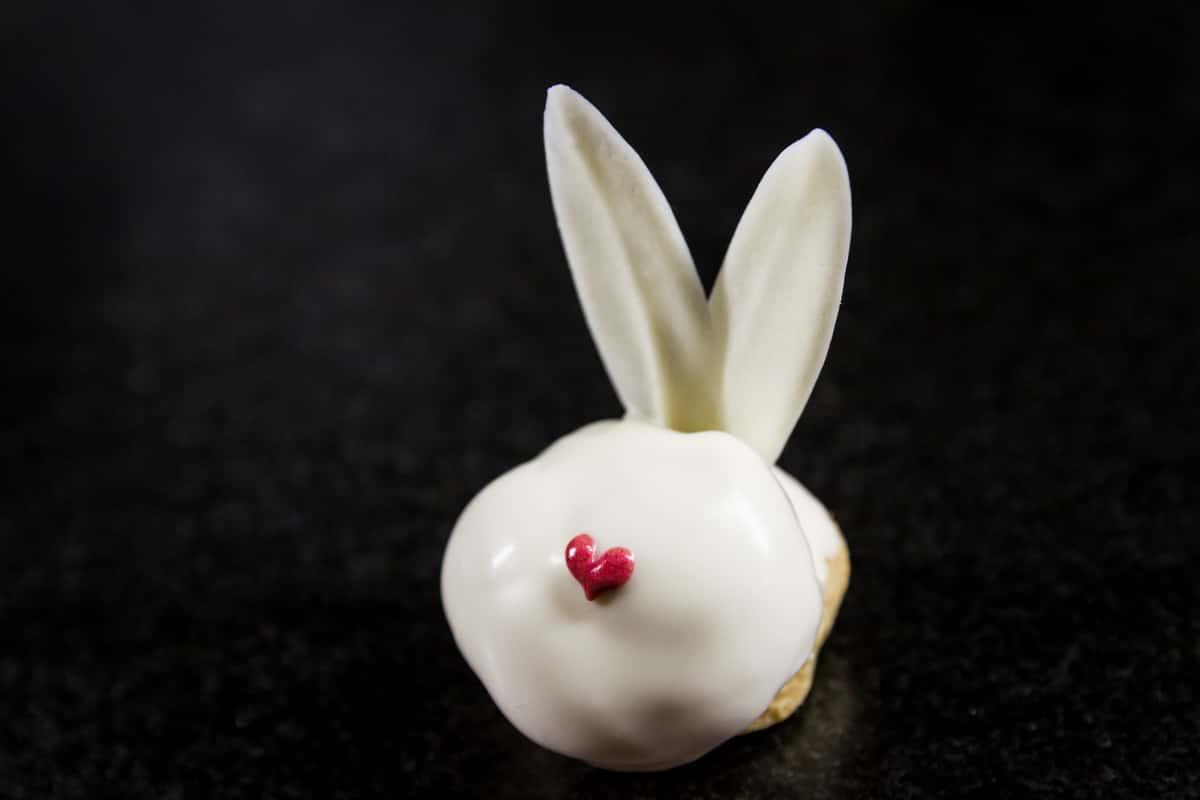 White Rabbit Cream Puff