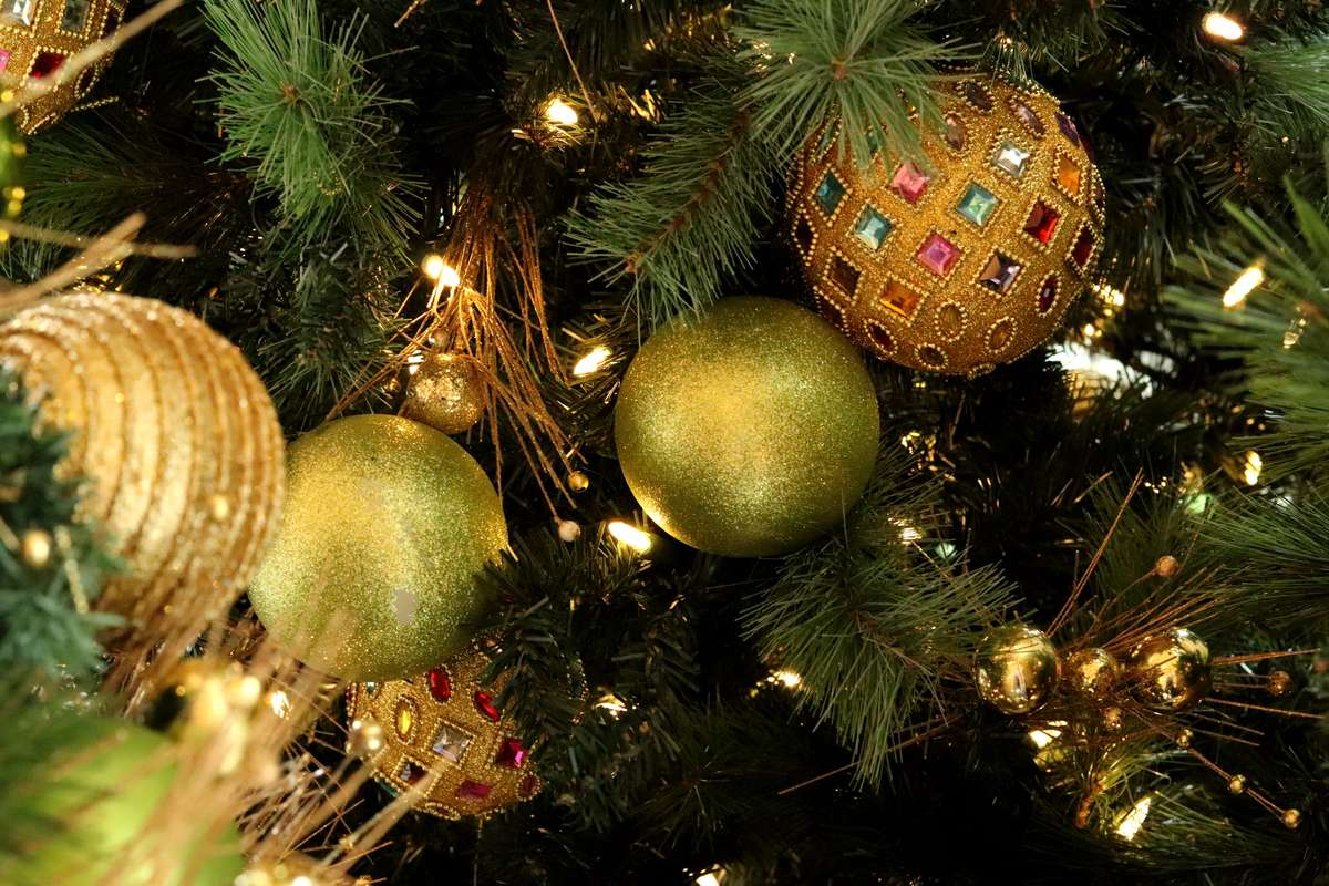 Christmas holiday lights on tthe tree