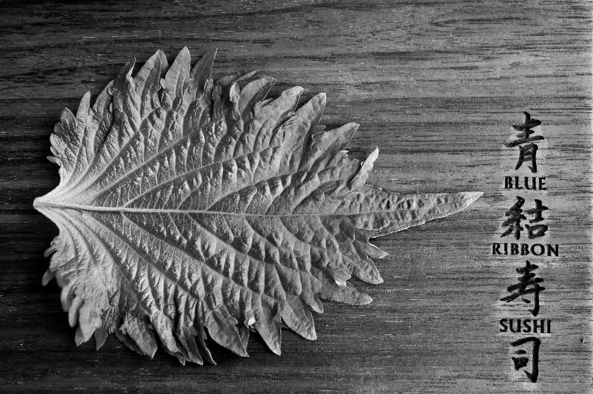 oba leaf board