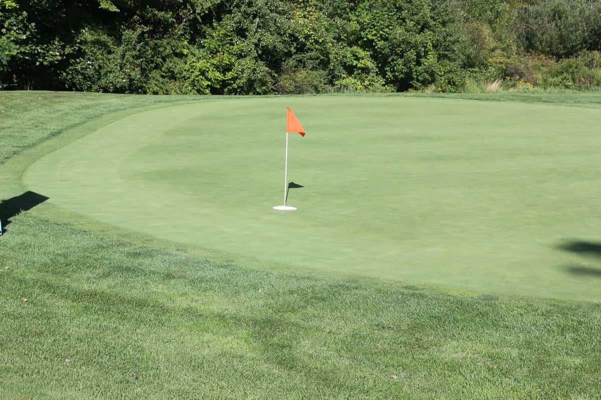 flag on golf course