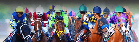 horses racing image
