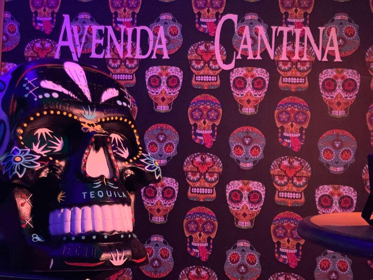 Avenida Cantina Day of the Dead skull