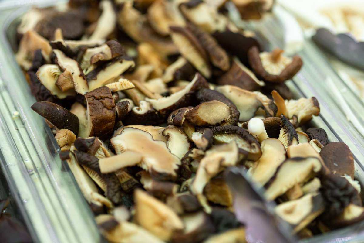 22. Shiitake Mushroom