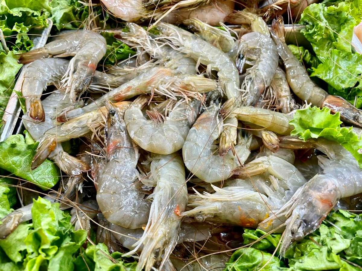 4. Farmed Shrimp