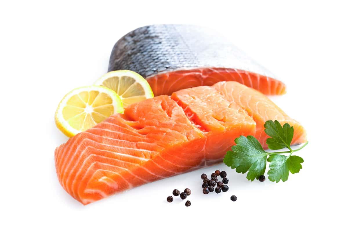 Fishery Bundle