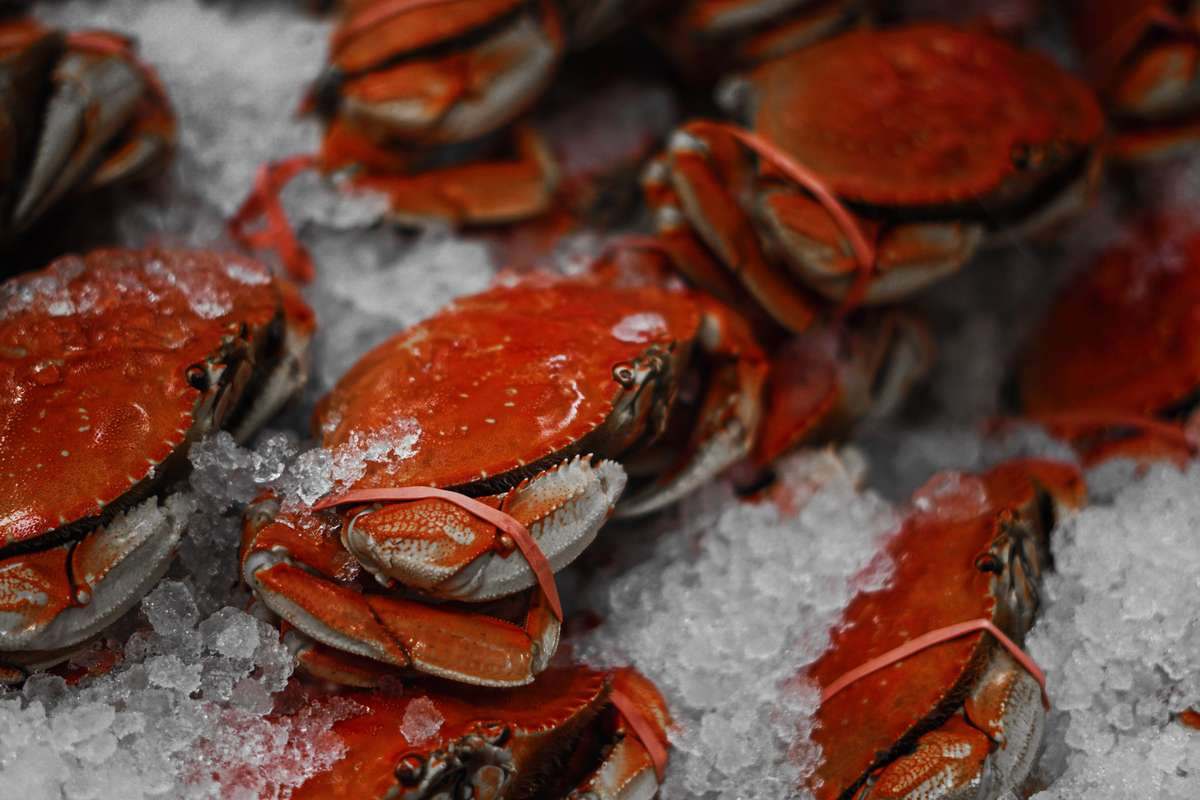 Seafood Spot Crabs for Join Our Team page