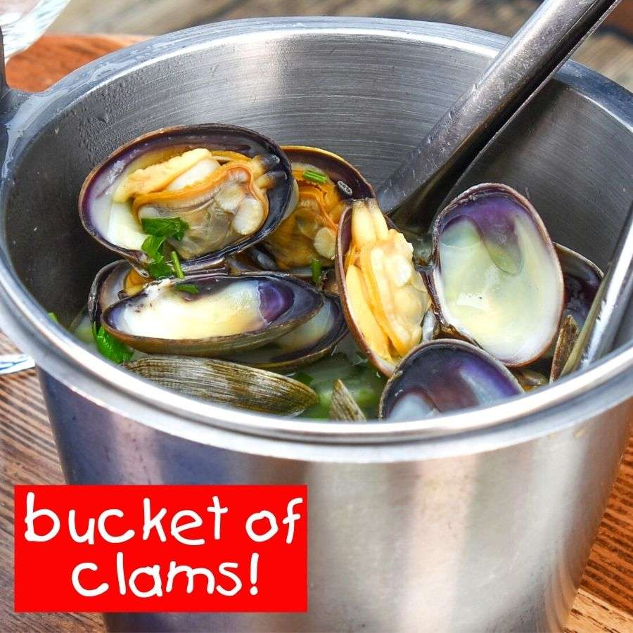 Bucket of Steamer Clams 1 lb