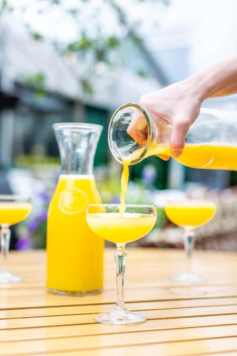 Mimosa Carafe