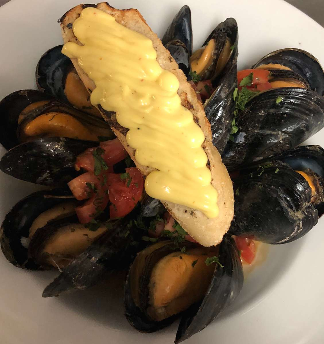 Steamed Cape Mussels