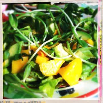 Dr. Joe's Mango Salad
