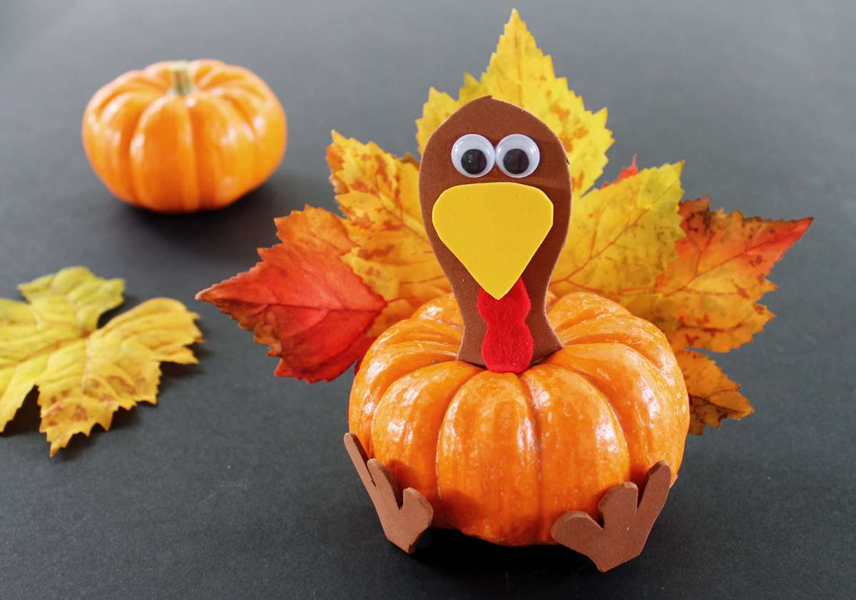 pumpkin & turkey
