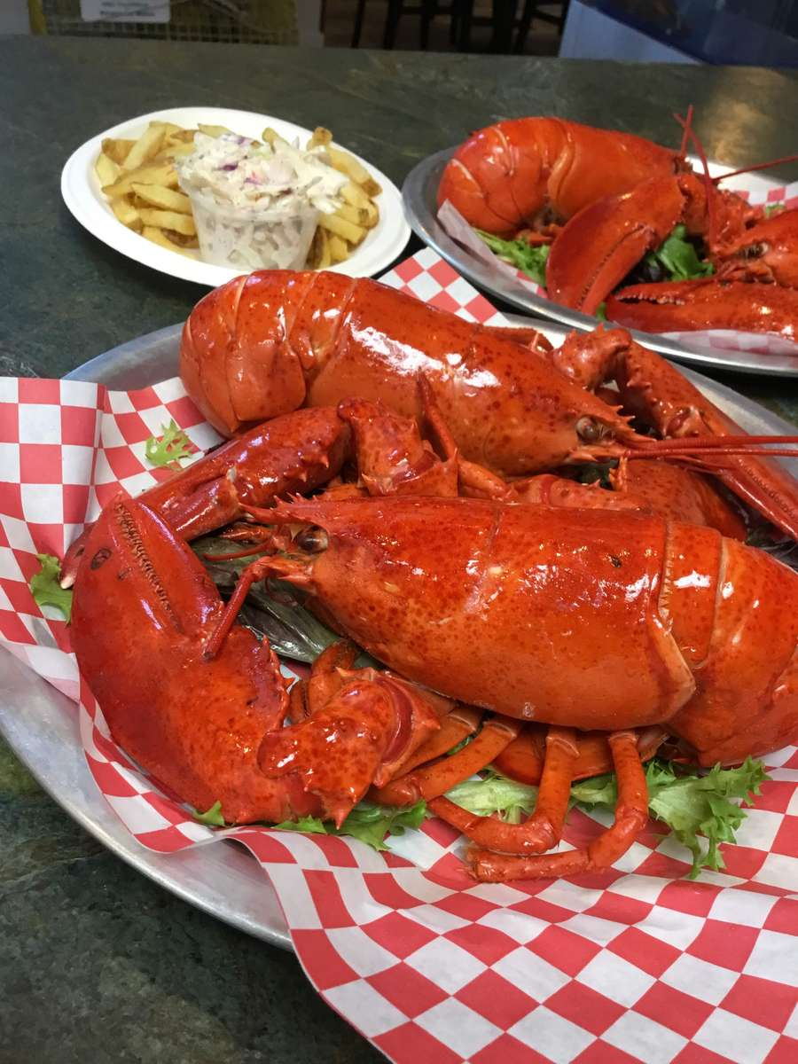 Steamed Maine Lobster