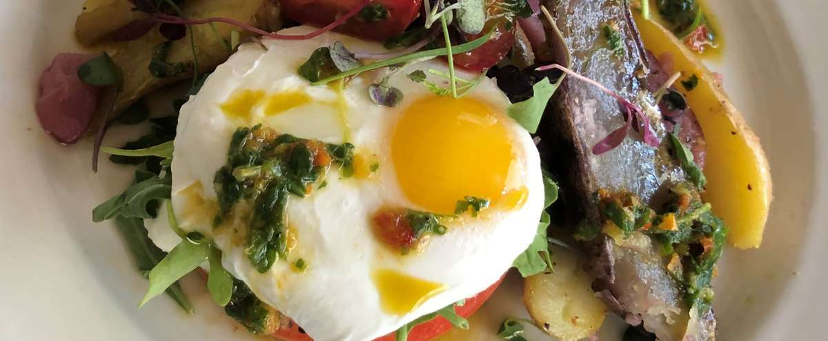 poached eggs on top of tomatoes with microgreens