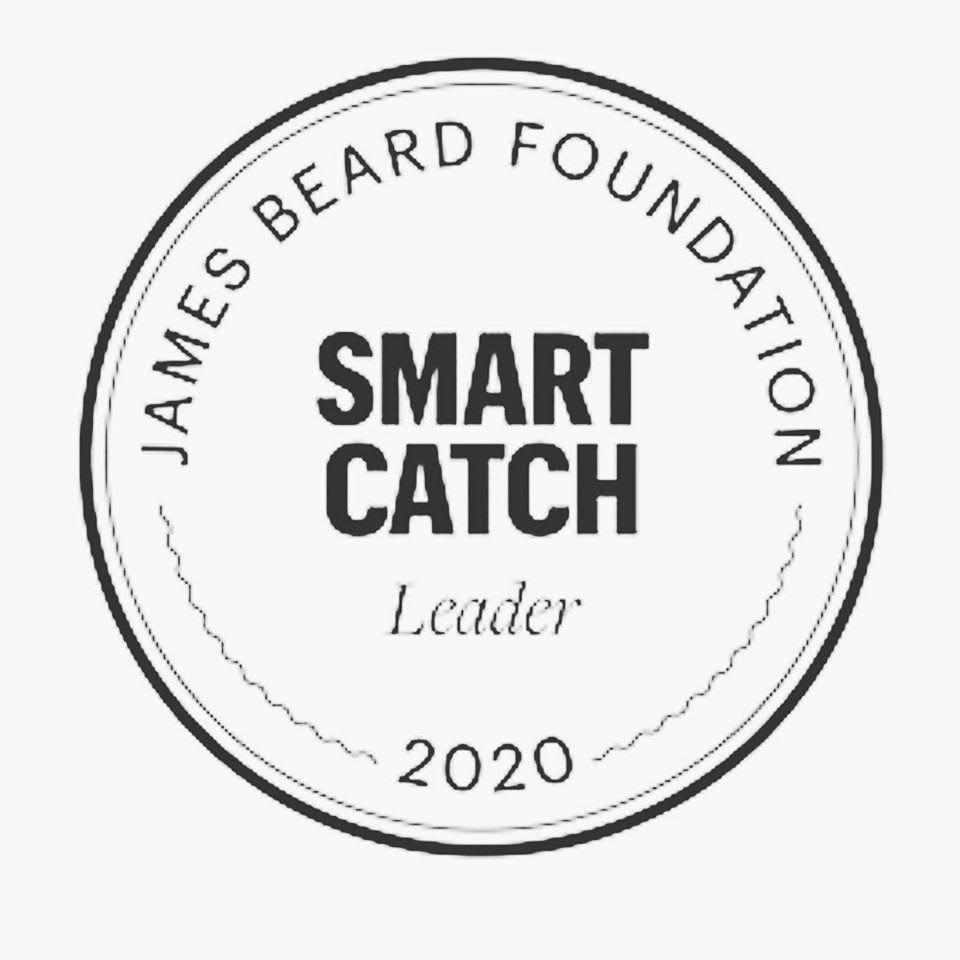 smart catch 2020