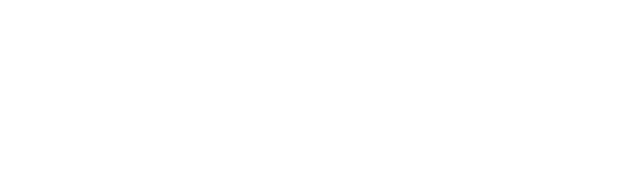 Main Logo of Wood Paddle Pizza