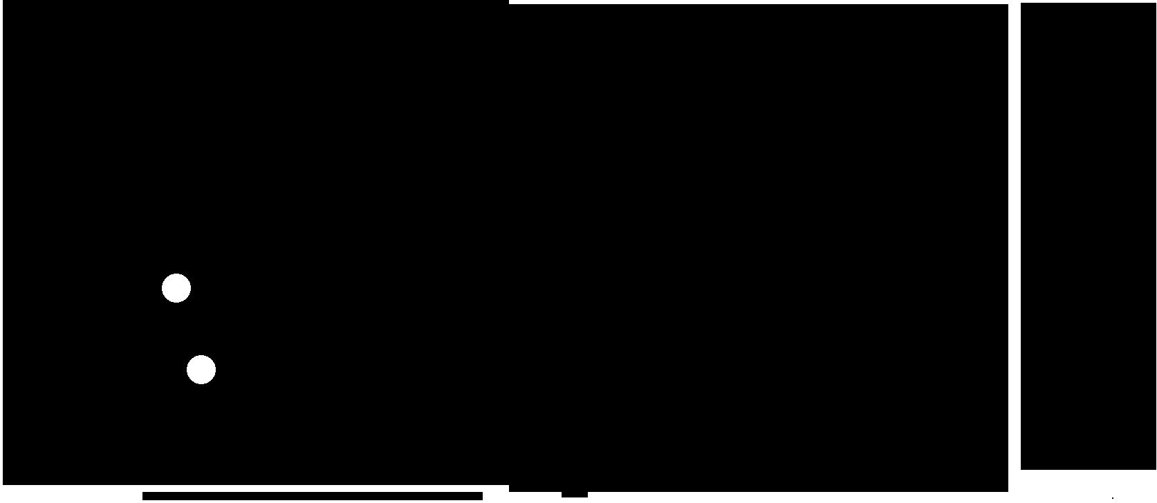Original VICKYLOU'S Logo