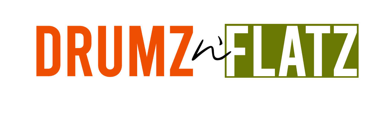Drumz n Flatz logo