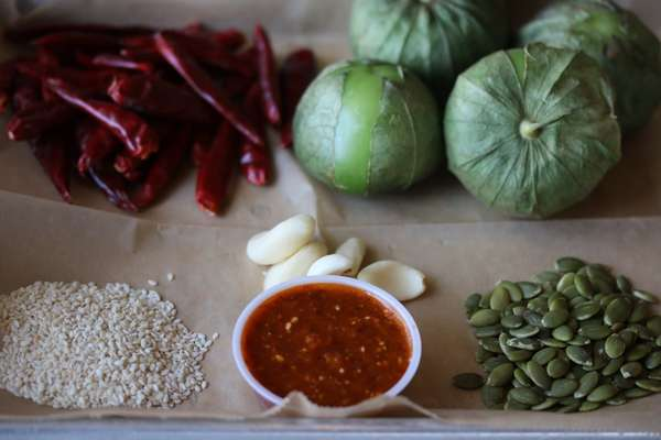 arbol salsa