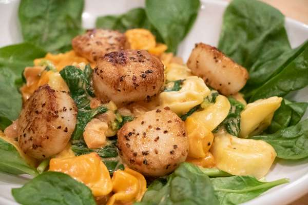 Pasta with Seared Scallops