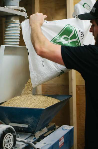 pouring hops