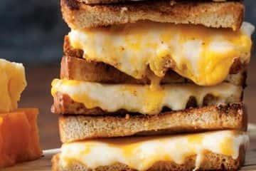 3 Cheese Panini
