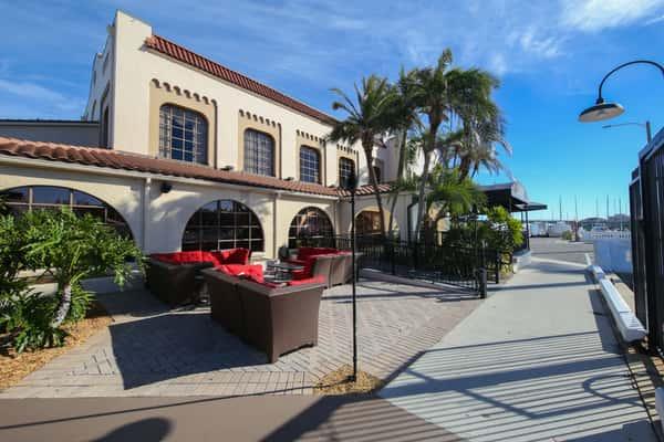 exterior patio palms