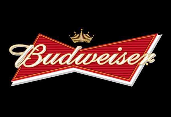 Budweiser Bottle