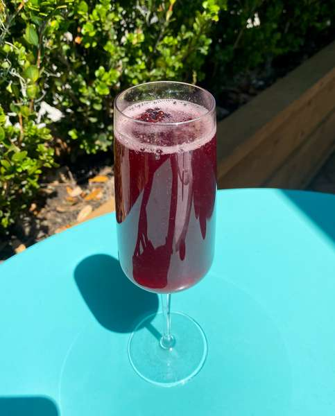 Berry Fever Mimosa